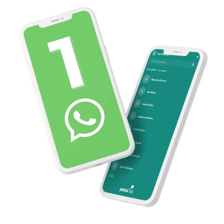 cada-pessoa-da-sua-empresa-usa-um-whatsapp-diferente-com-pecazap